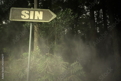 Fotografie, Obraz old signboard with text sin near the sinister forest