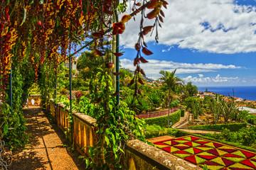 Madeira island, Botanical Garden Monte, Funchal, Portugal