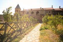 Vineyard At Alaverdi Monastery In Georgia