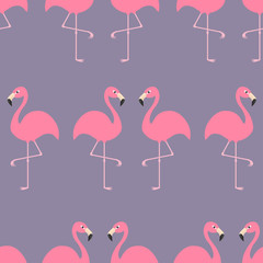 Flamingo Seamless Pattern Exotic tropical bird. Zoo animal collection. Cute cartoon character. Decoration element. Violet background. Flat design.