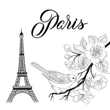 Bird Sitting On A Brunch With Eiffel Tower Isolated Over White Background. Vector Illustration.
