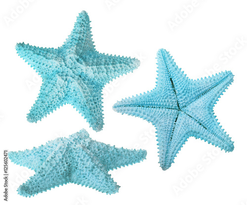 Fotografía set of three light blue starfishes isolated on white