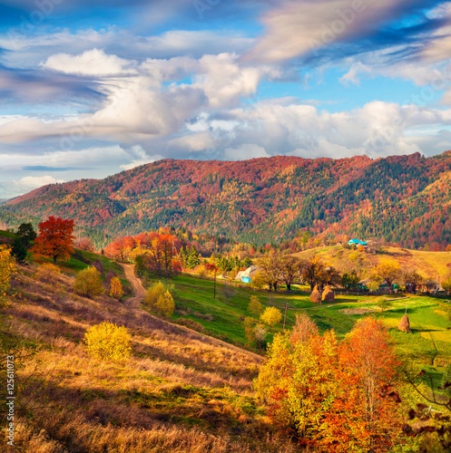 Poster Miel Colorful landscape in the mountain village Babyn