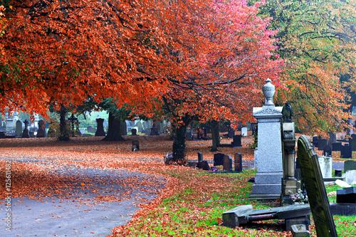 In de dag Begraafplaats Blank old gravestones in an ancient cemetery