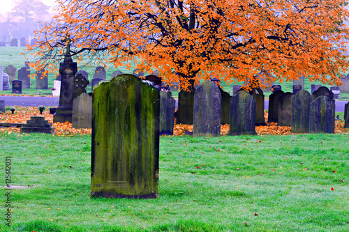 Foto op Canvas Begraafplaats Blank old gravestones in an ancient cemetery