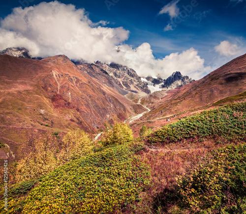 Poster de jardin Parc Naturel Misty autumn morning in the Caucasus mountains.
