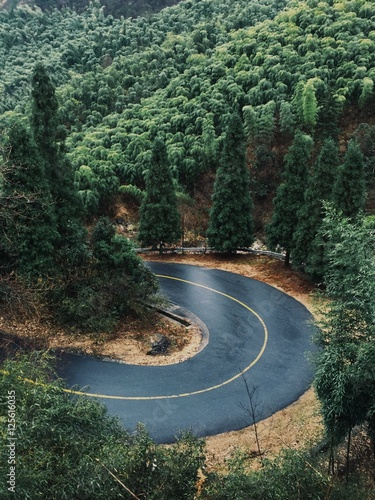 Photo beautiful road in the middel of forest