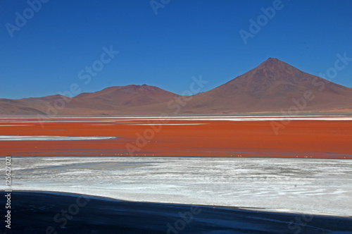 The nice red colored Laguna Colorada in southern Bolivia, South America
