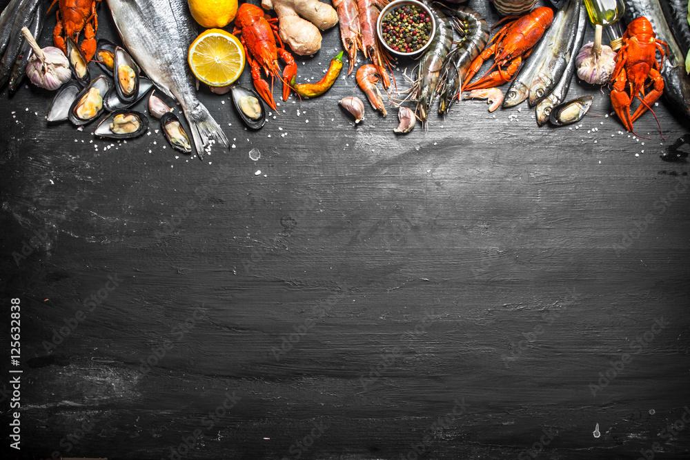 Fototapety, obrazy: Fresh seafood.