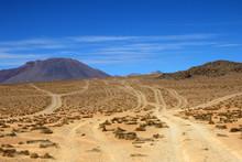 Wheel Tracks In The Desert Near Laguna Colorado, Which One Leads To Destination, Bolivia South America