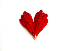 A Heart Made From Red Flower Petals On A White Background.