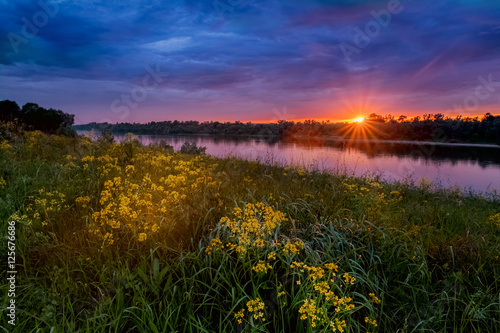 Fényképezés  Summer sunset landscape with a river and yellow flowers