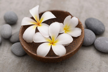 Fototapeta na wymiar Beautiful Composition of frangipani in wooden bowl with spa stones