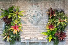 Curtain Of Interior Waterfall