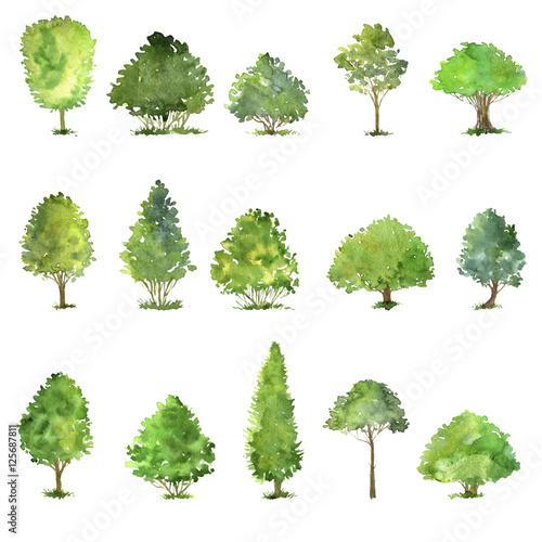 Foto vector set of trees drawing by watercolor