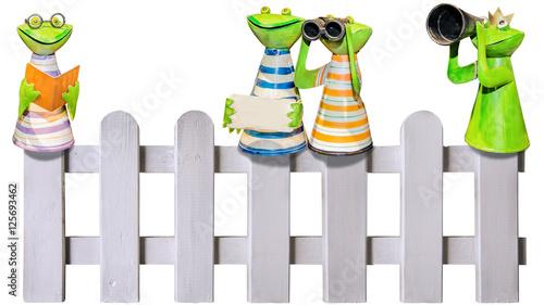 Lustige Frosche Blechfiguren Auf Zaun Freigestellt Buy This Stock