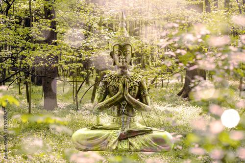 Photo  Buddha
