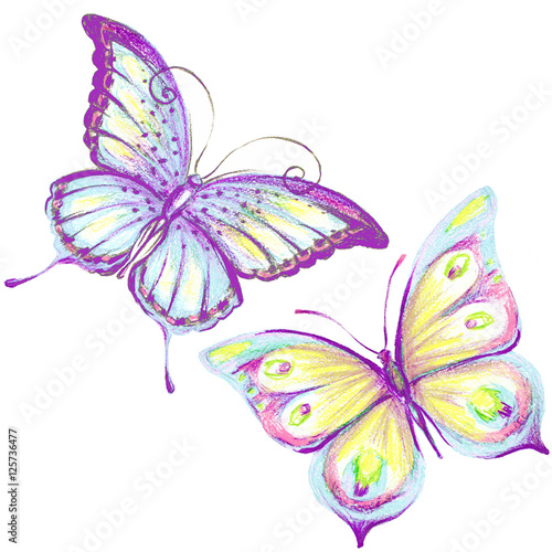Tuinposter Vlinders butterfly,watercolor, isolated on a white