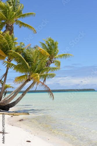 Tropical beach, lagoon, Polynesia