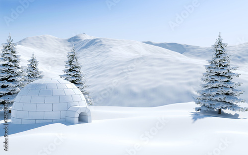 Obraz na płótnie Igloo in snowfield with snowy mountain and pine tree covered with snow, Arctic l