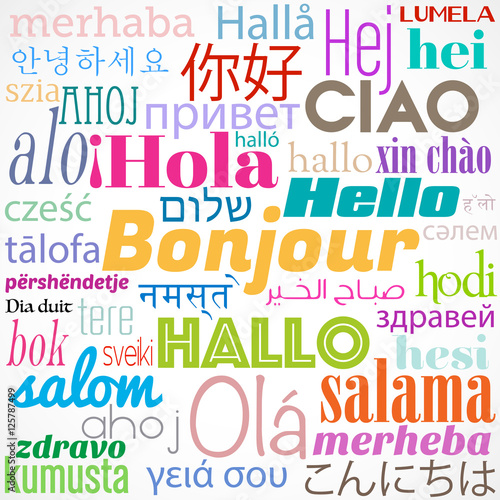 motbonjour,multilingue Canvas Print