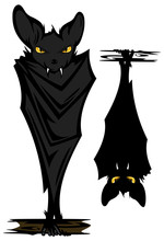 Halloween Bat  Vector Design Set