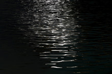 Light Reflects On Water Surface