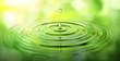 canvas print picture - Wassertropfen und Wellen mit grüner Spiegelung