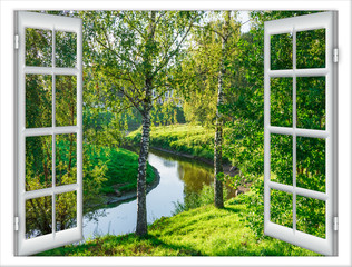 Fototapetaviews of the pond