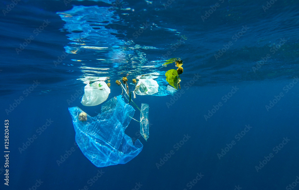Fototapety, obrazy: Marine pollution of plastic