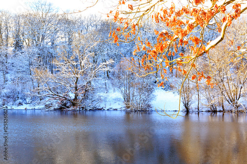 Winter landscape with trees and forest lake.