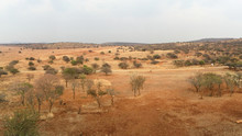 South African Veld Region