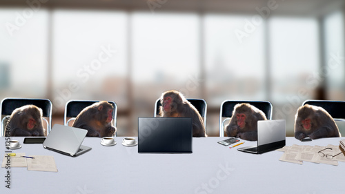 Foto op Plexiglas Aap Monkeys as office staff in office.