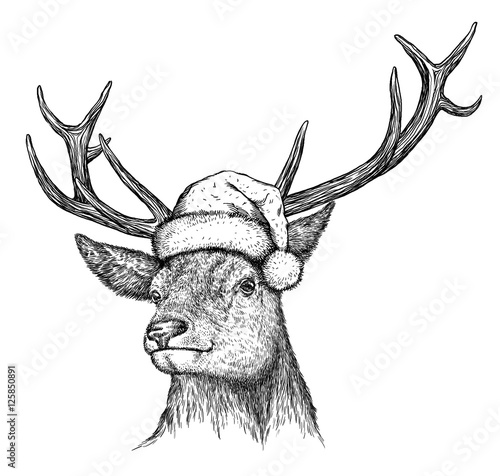 Photo sur Toile Noël deer, black and white engrave. Christmas hat.