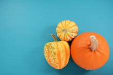 Orange Pumpkin And Boldly Patt...