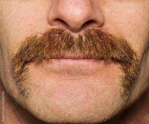 Obraz Movember Mustache - fototapety do salonu