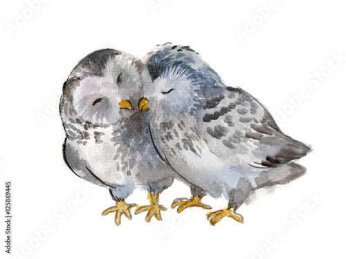 Poster Uilen cartoon Two polar owls isolated on a white background, watercolor