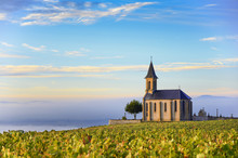 Vineyards And Church Of Saint ...