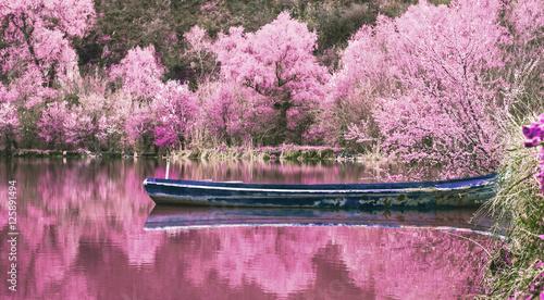 Montage in der Fensternische Rosa Lovey New spring, old fishing boat - -Rusenski Lom- Park, Ruse district, Bulgaria - Infrared filter