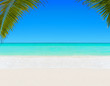 Tropical white sandy palm beach and clear ocean water background