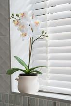 Flower Decoration In Modern Nice Bathroom
