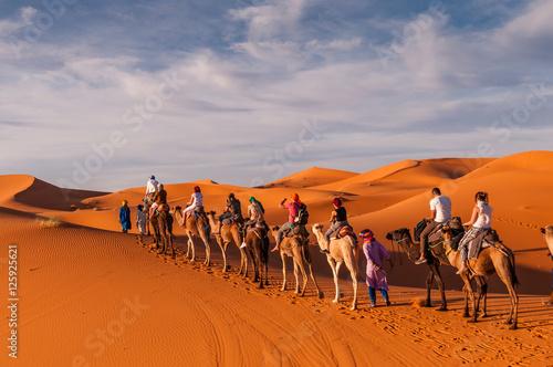 Foto op Aluminium Marokko Karawane in den Dünen der Sahara bei Merzouga (Erg Chebbi); Marokko