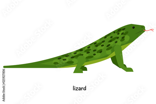 Fotografija Green lizard with red tongue