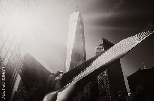 Oculus in the World Trade Center Transportation Hub плакат