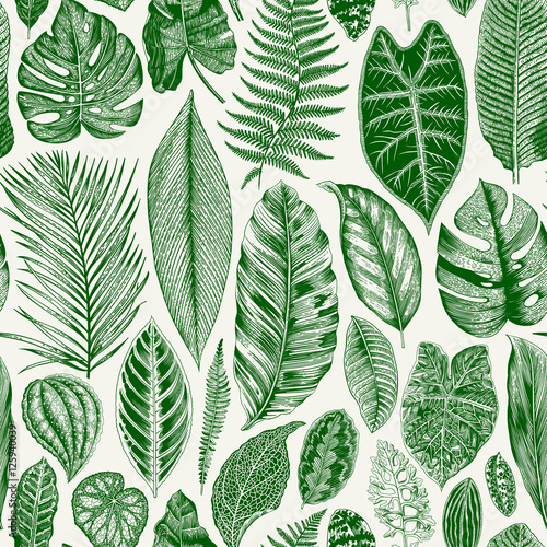Cotton fabric Vector seamless vintage floral pattern. Exotic leaves. Botanical classic illustration. Green