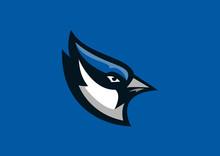 Blue Jay Bird Sport Mascot