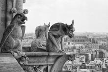 Close-up Of Chimeras On The Top Of Notre Dame De Paris