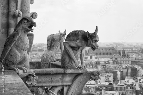 Fotografie, Obraz Close-up of Chimeras on the top of Notre Dame de Paris