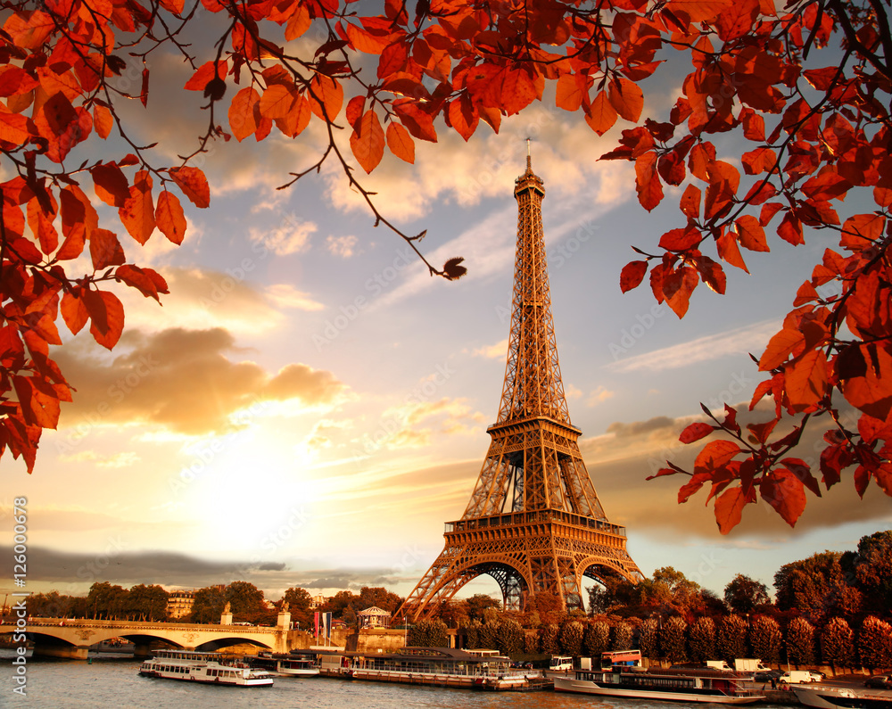 Fototapeta Eiffel Tower with autumn leaves in Paris, France