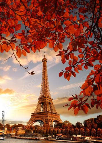 paryska-wieza-eiffla-posrod-jesiennych-lisci-na-tle-wieczornego-nieba